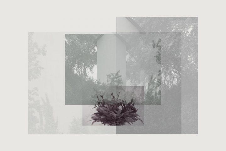carolinrauen_utopia_002